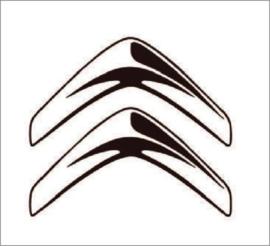 Citroën uitlaatsetjes