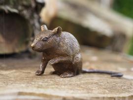 RAT / ZIT