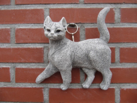 POES STAAND