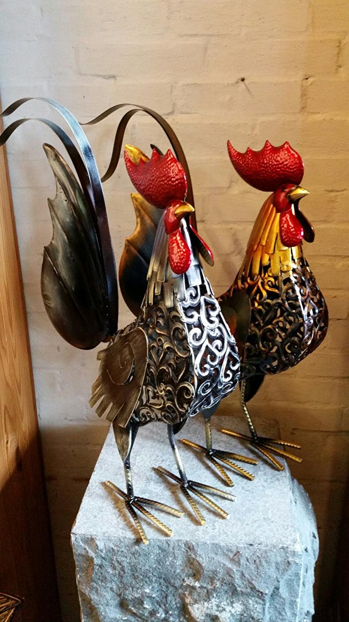 Kippen Huis En Tuin Decoratie Marie