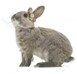 Kaninchen mit Blümchen