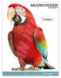 Wall Decal Lorre (Parrot)