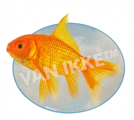 Fisch XS