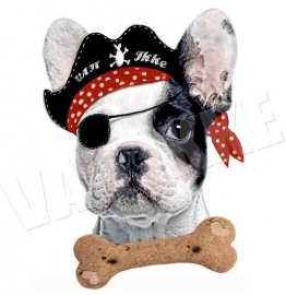 Bessie the pirate dog