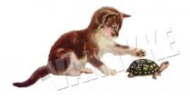 Kätzchen mit Schildkröte