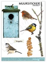 Vögel mit Vogelhäuschen