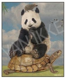 Panda mit Igel