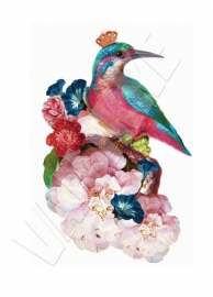 Wall decal Kingfisher