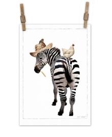 Zebra op canvas