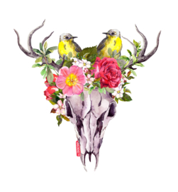 Dear skull with flowers and birds