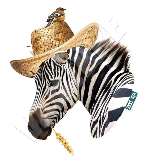 Iron-on Zebra kore aar