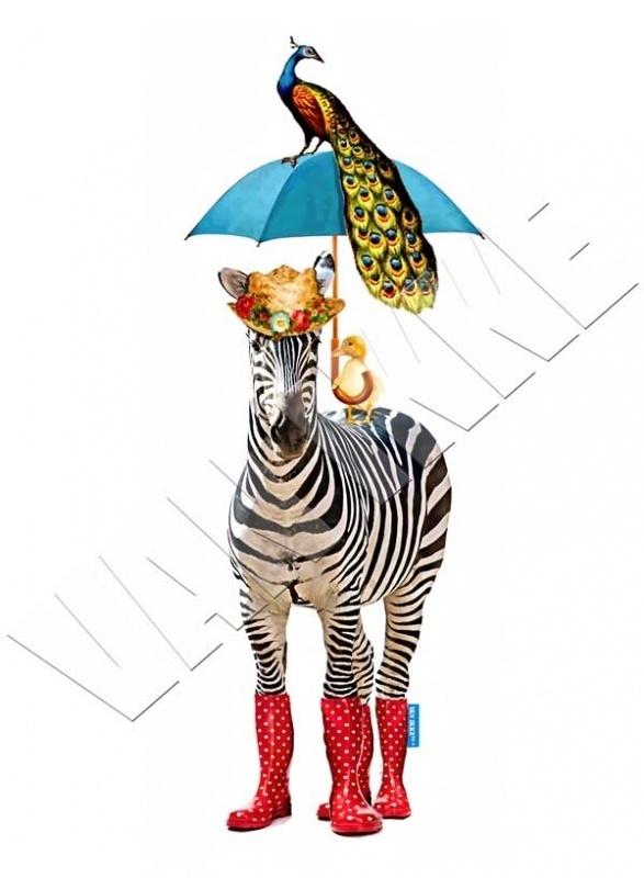 Zebra met paraplu