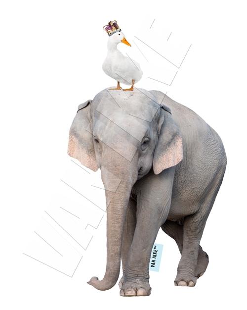 Olifant met gans