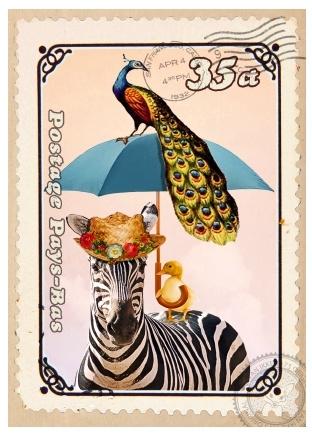 Kaart Zebra plu
