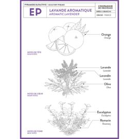 'Aromatic Lavender' , 300ml