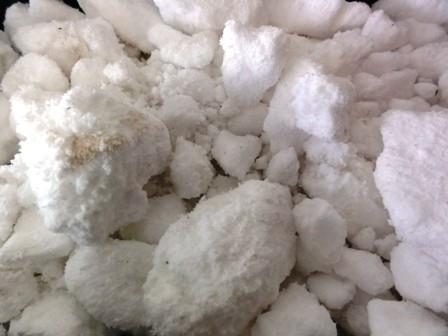 Fytocell lightweight substrate 15 liter bag