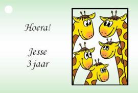 traktatiekaartjes giraffen, per 10 stuks