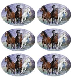 stickers paarden, glans per 18