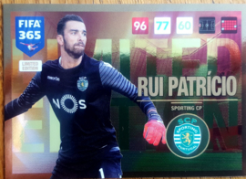 Limited Edition RUI PATRICIO