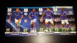 Panini Adrenalyn XL CL 14/15 Update Edition Schalke 04 complete set