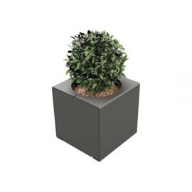 plantenbak KUBE staal 450x450x450mm