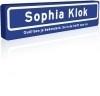 Verjaardag straatnaambord Sarah 600x150mm DOR