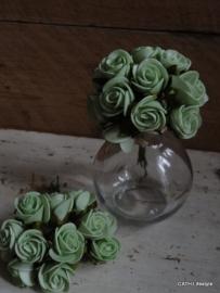 roosjes / Bosje foam  groen