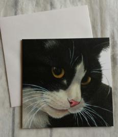 Kaart kat zwart - nr4