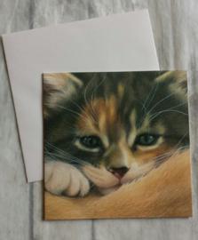 Kaart kitten - nr3