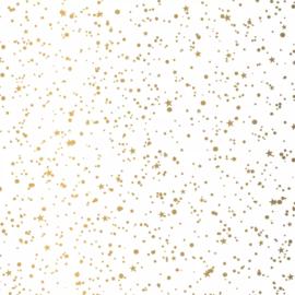 Vloeipapier / twinkeling stars wit goud sterren  / 50x70 cm / 5 stk