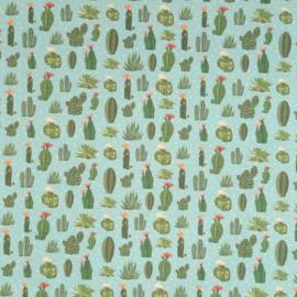 Kadopapier / cactus