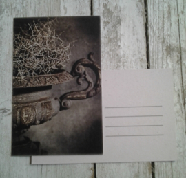 Ansichtkaart / tuinvaas / nostalgische