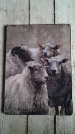 Bordje met print / schapen - sheeps