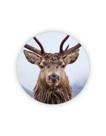 Sticker rond - Hert - color  | 35mm | 10stk