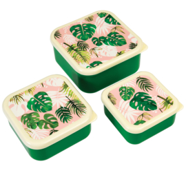 Lunchboxen set / Tropical Palm