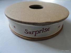 EI 3184 Band 3 meter spoel Surprise