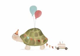 Kaart - Schildpad | inclusief envelop