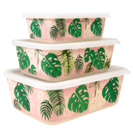 Bamboe bewaardozen set / Tropical palm