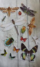 Set vlinders / 14 stuks