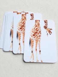 Mini kaart Giraffe | pstk