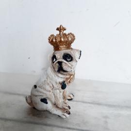 Decoratieve hond - bulldog