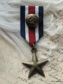 Broche / medaille star rwb