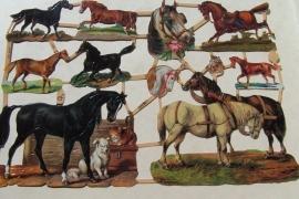 ME 7226 Poezie plaatjes paarden
