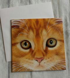 Kaart kat ginger - nr5