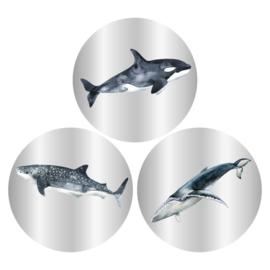 Stickers - sluitzegels  rond| vissen | 9 stk