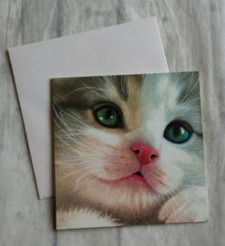 Wenskaart - kat - nr1