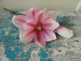 CE Magnolia tak pink