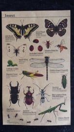 Kraft stickers insecten / insect