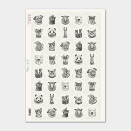 Stickervel / dieren  / EI1729
