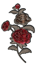 HKM Applicatie rozenranken